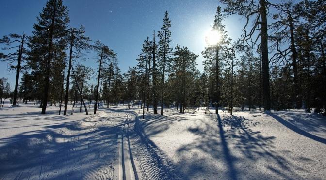Lappland 2012
