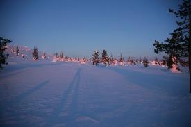 morgens um 6 Uhr im Riisitunturi Nationalpark, minus 22°