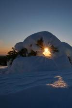 Schneetor zur Sonne