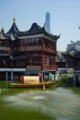 Shanghai - Teehaus