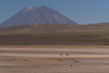 Ewige Weite mit Vulkan Misti