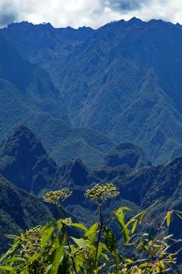 Machu Picchu von hinten