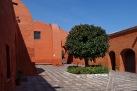 Orangenbaum Kreuzgang