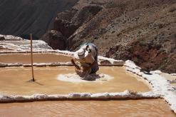 Salzterrasse bei Cusco (3)