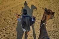 Kameltrekking bei Jodhpur