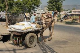 ...unterwegs nach Agra